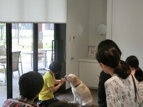 犬の歯みがき教室
